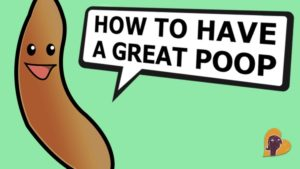 How-to-have-a-great-poop-an-instructional-video-by-Mama-Natural1